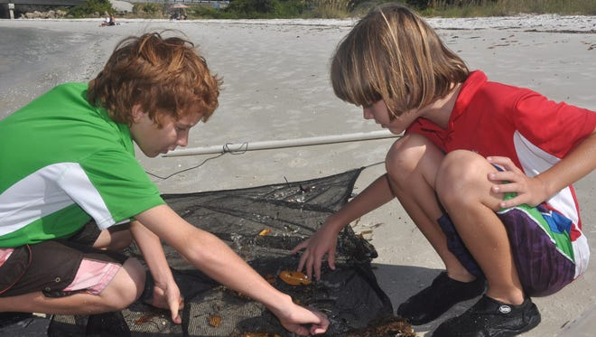 The July program at Lovers key features a wading tour, similar to the monthly wading tours that are held year round.