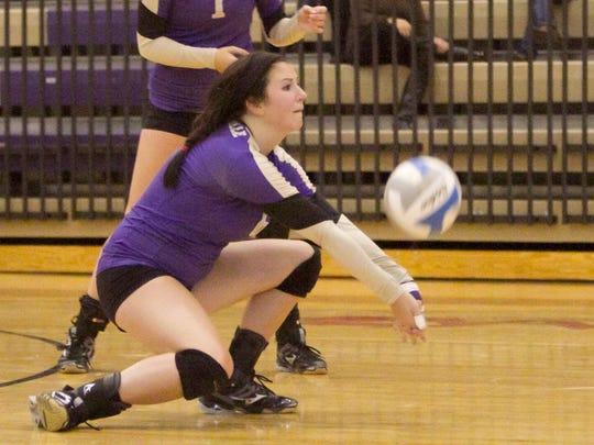 Fowlerville volleyball.jpg