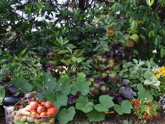 Foodscape17-basket in garden