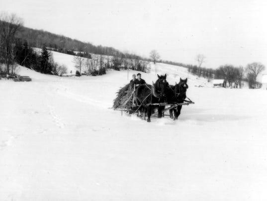 BUR1960  - Horses and christmas tree