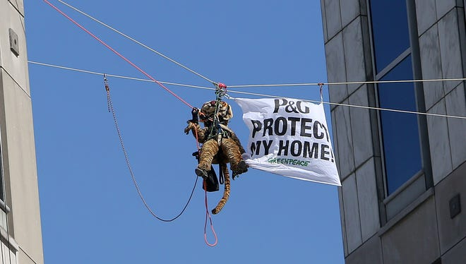 Greenpeace activists, including this one dressed in a tiger suit, hung banners March 4 in protest of Procter & Gamble outside of the company's headquarters in downtown Cincinnati.