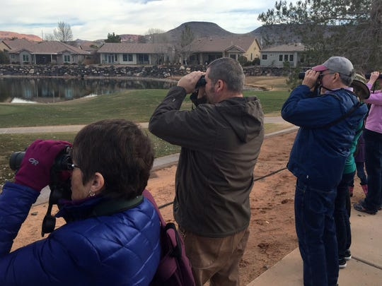 Birders look through binoculars at birds as their guide, Utah Division of Wildlife Resources biologist Kevin Wheeler, second from left, calls out the types of birds he sees as they participate in a St. George Winter Bird Festival field trip Friday, Jan. 29, 2016 in St. George.