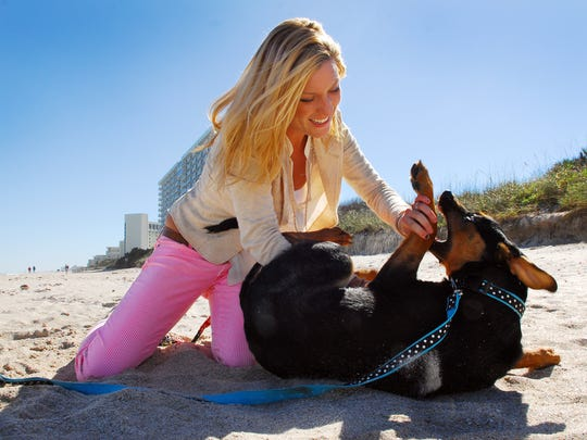 The Humane Society of Ocean City invites dogs and their owners to take over the beach in late May.