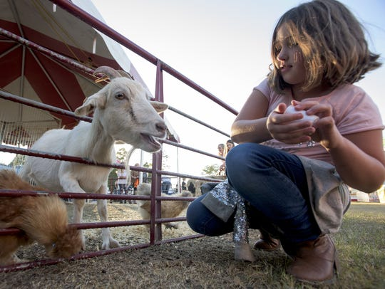 Emily Findley feeds animals at the petting zoo at the