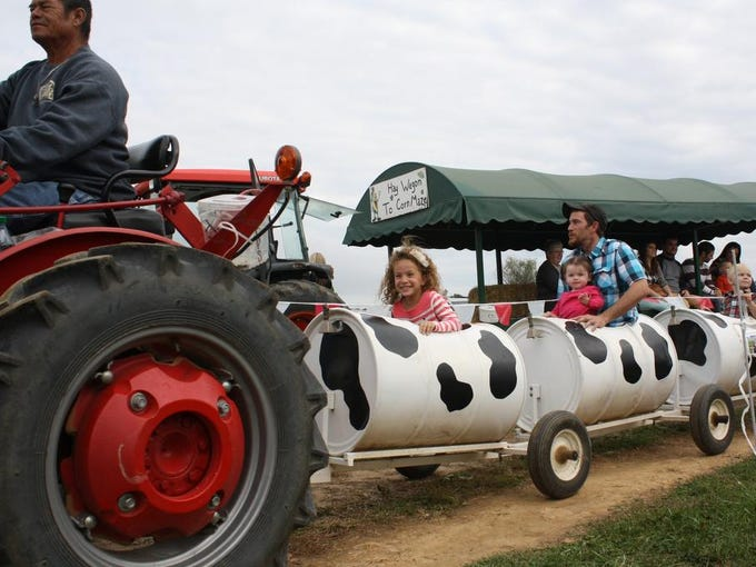The ever-popular Cow Train runs a circuit around the