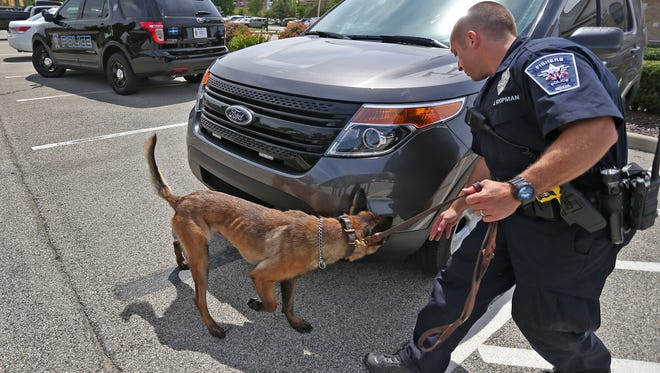Fishers Police Department officer Jarred Koopman on July 20, 2015, demonstrates with his police dog Harlej how they had searched a car during a recent stop after noticing an odor of marijuana.