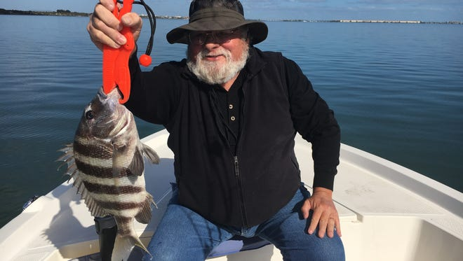 John with one of the many sheepshead that he and wife, Theresa, caught on their recent adventure with Capt. Charlie.