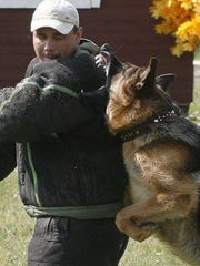 Aggression training of a dog used in the Shreveport