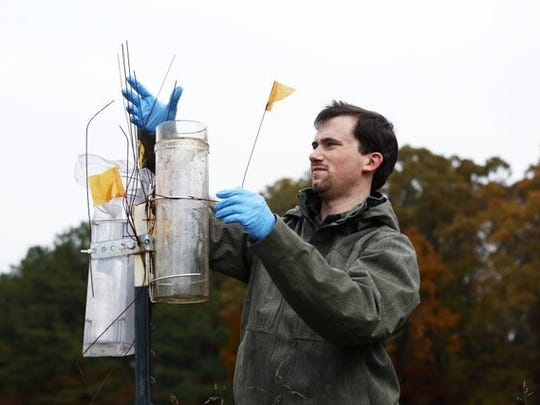 "John Bursi, a University of Memphis graduate student in the earth sciences department, conducts research in the ""recharge"" area of the Memphis Sand aquifer in Fayette County in this file photo."