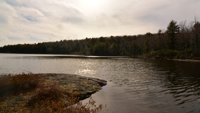 The trail alternates between following the shoreline around Guilder Pond and diving back deeper into the forest.