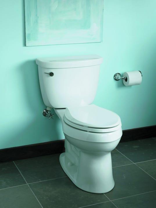 635732772042637575-toilet