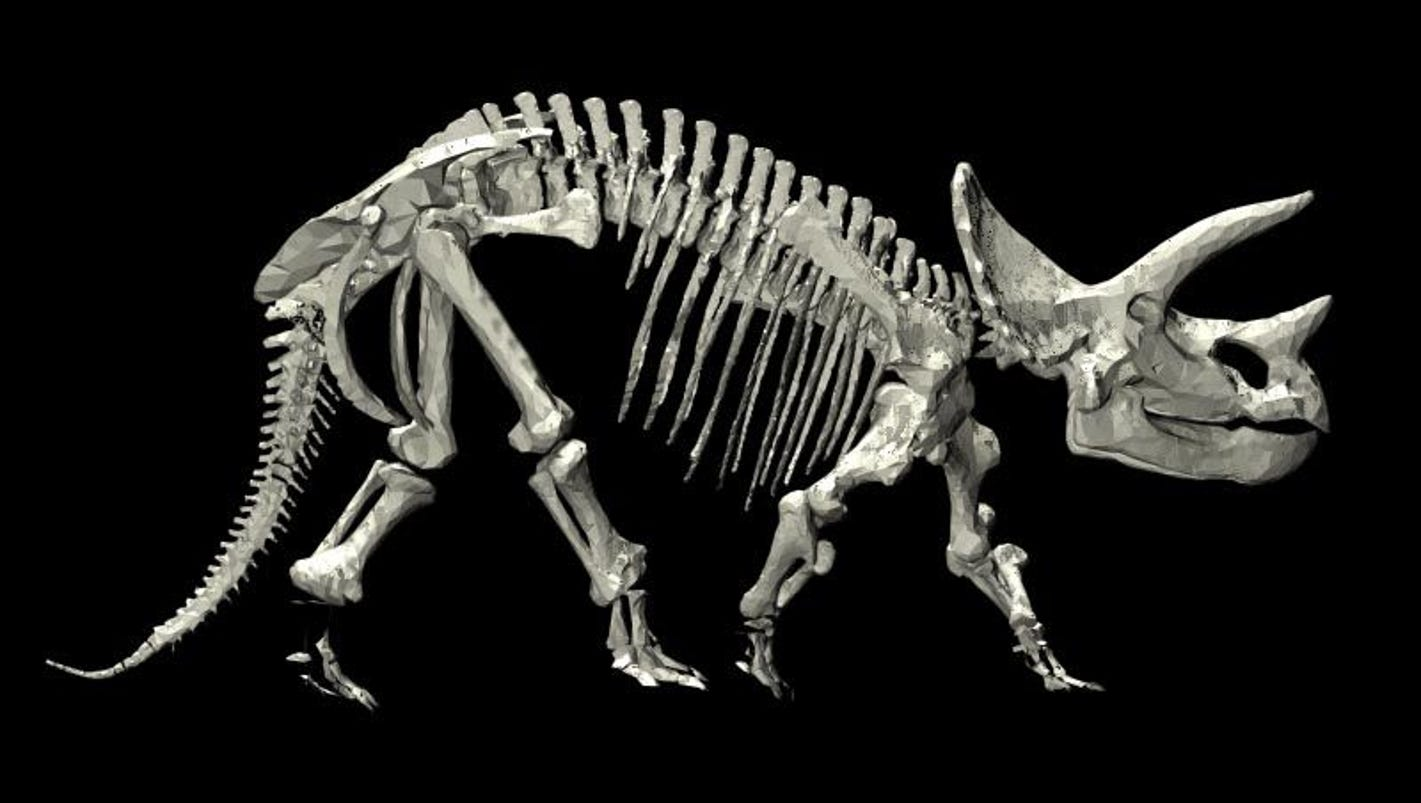 a study of dinosaurs Similarly, dinosaurs were around for a very long time, and so for any kind of study  of evolutionary change or diversity over a long period of time,.