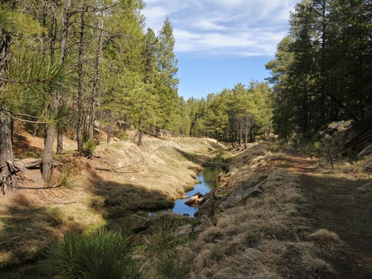 Willow Springs Canyon