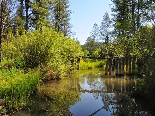Singles in pinetop lakeside az