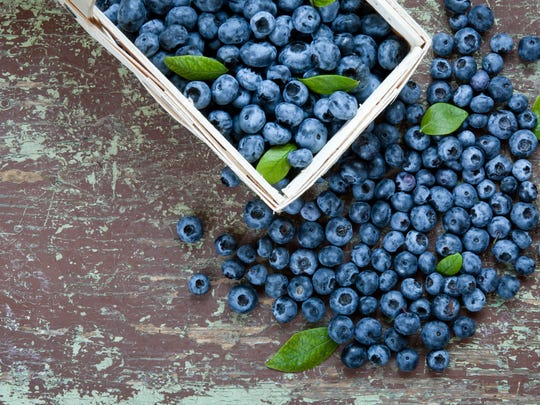 New Harvest Park's annual Blueberry Festival will take place on June 27.