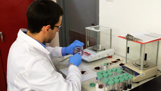 A lab technician at CannLabs in Denver scrapes crumbs of a marijuana-infused cupcake into a vial for potency testing.