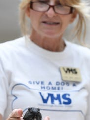 Cyndi Donley with the Vanderburgh County Humane Society
