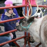 Porter Froetschner, who was visiting from Kansas, got up close and personal with one of Santa?s reindeer at Windsor Wonderland in 2011,