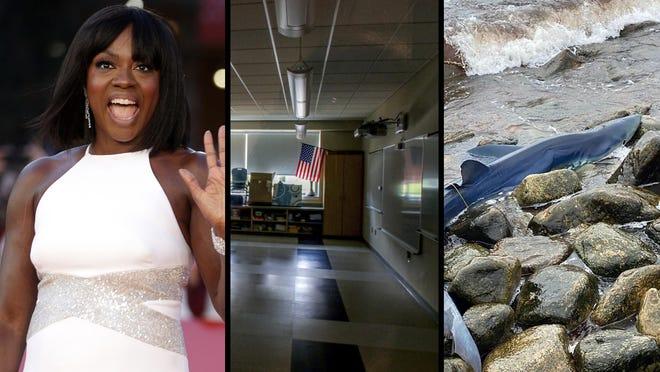 Viola Davis, school delay and a blue shark.