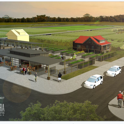 Conceptual rendering of plans for Detroit's first U-pick apple orchard on the city's east side.