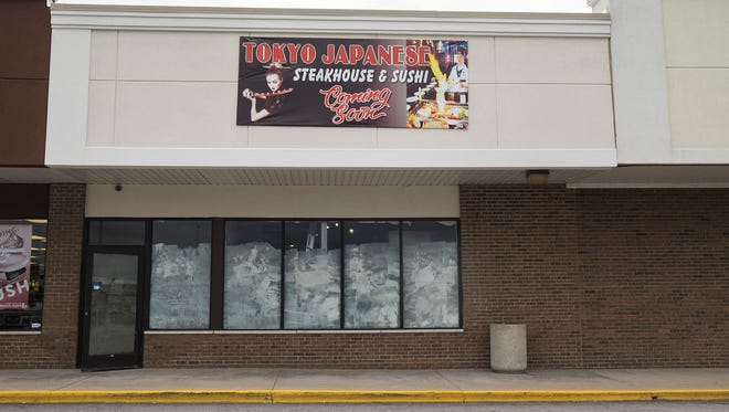 Tokyo Japanese Steakhouse and Sushi, located at 4095 24th Ave. in Fort Gratiot, is scheduled to open this fall.