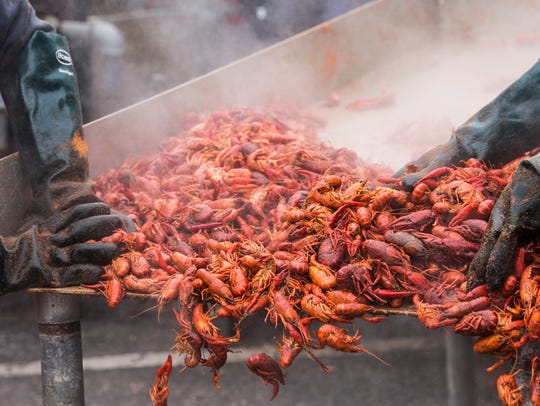 Cooked crawfish are transferred to bins to be served