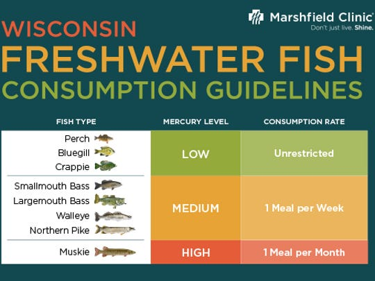Wisconsin freshwater fish consumption