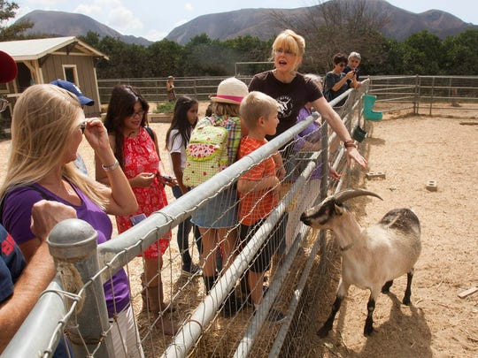 Donna Johanson of Chivas Skin Care in Fillmore talks about one of her French Alpine goats, Shrek, during  Ventura County Farm Day. Tours of the farm and its on-site soap-making workshop will again be available -- albeit by reservation — when the fifth annual Ventura County Farm Day takes place on Nov. 4.