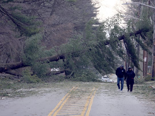 James DePina and Wynter Watson walk near a downed tree