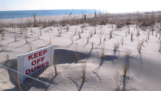 This Jan. 2, 2016 photo shows a sand dune in Point Pleasant Beach, N.J. At least 11 Point Pleasant Beach homeowners are the latest to sue the state Department of Environmental Protection seeking to block a state plan to build dunes along most of the state's 127-mile coast, taking privately owned property to do so.