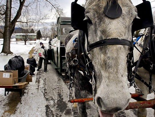 -BUR 20140131 HORSE GREEN C2.jpg_20140204