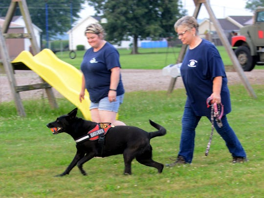 Zoom'n Zella runs in front of Jeannie Wolfe, left, and Alice Ault Thursday, July 13, 2017, behind the Liberty Township Fire Department station. Zella is the department's new search and rescue dog.