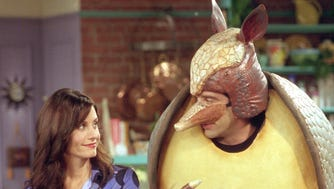 FRIENDS -- NBC Series -- 'The One Where Chandler Can't Tip' -- Pictured (l-r):  Courteney Cox Arquette as Monica Geller and David Schwimmer as Ross Geller -- NOT TO BE OUTDONE BY CHANDLER'S SANTA, ROSS INVENTS HIS OWN MASCOT, THE HOLIDAY ARMADILLO. --- DATE TAKEN: 2004  No Byline   Warner  Bros        HO      - handout   ORG XMIT: ZX14932