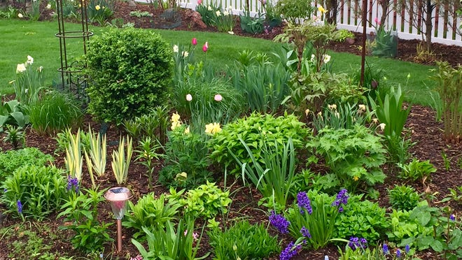 For gardeners, there's no better place to vacation in May than in their own backyard — hard work and all.