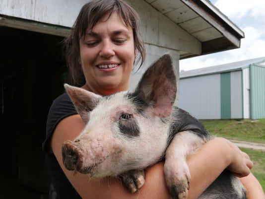 MAIN she n Berkshire Pigs0813_gck-01.jpg