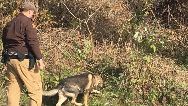 Deputy James Eblen of the Henderson County Sheriff's Office and the department's K-9, Aries, investigate an area near Ellis Park where the body of Donald Xavier Jackson Freels was discovered Saturday morning.