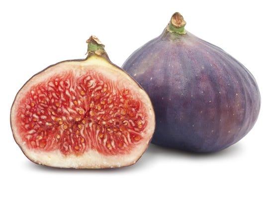 Figs2.jpg