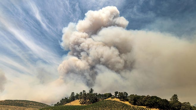 In this Aug. 18, 2020, file photo, a plume rises over a vineyard in unincorporated Napa County as the Hennessey Fire burns.