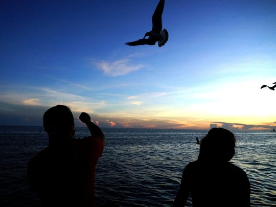 Silhouetted against the evening sky, Santiago Puac, 28, throws a piece of bread to a swooping seagull as storm clouds gather on the horizon. The storm was sitting over Cuba, 90 miles south of the dock on Key West that Santiago and Lillian Puac were sitting on, on Sept. 6, 2017, in advance of Hurricane Irma. (Via OlyDrop)