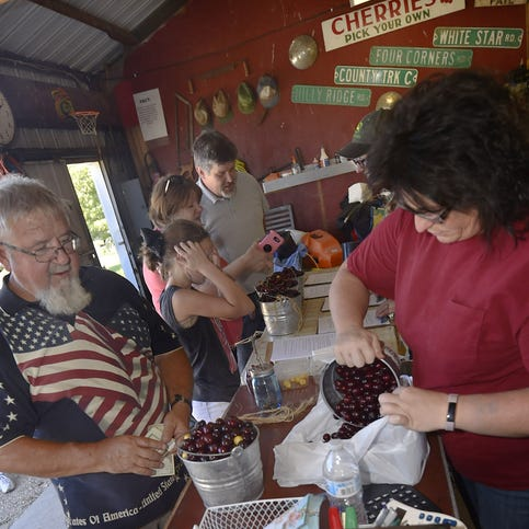 'Even the tart cherries are sweet': Don't miss great season of Door County cherries