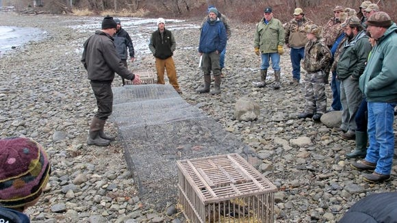 DEC will conduct a duck banding demonstration Feb. 13 on Cayuga Lake.