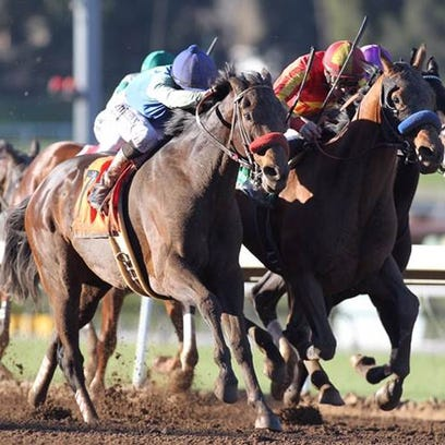 Hoppertunity back for another run in Clark Handicap at Churchill Downs on Friday