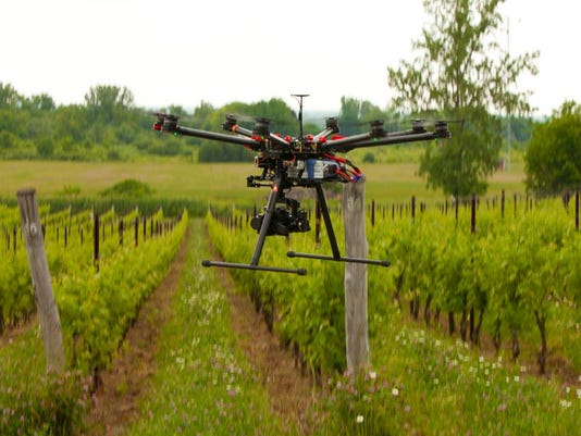 Niagara County-based Arrowhead Spring Vineyards recently allowed two remote-controlled helicopters to fly over the property's grapevines during a demonstration of how the devices could ease the challenges of farming.  Provided photo.