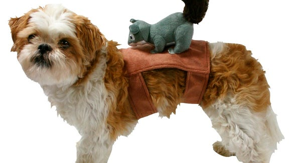 A dog costume from Target.