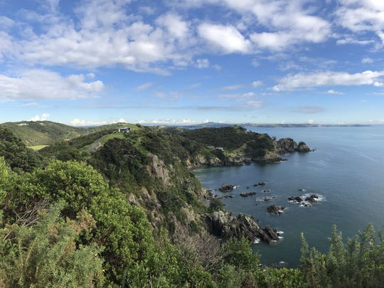 """Joey Huempfner described New Zealand as """"gorgeous, it's like a fairy tale. There are more sheep than people, and it is so sparsely populated. I could walk for ages down the middle of the road and not see another person."""