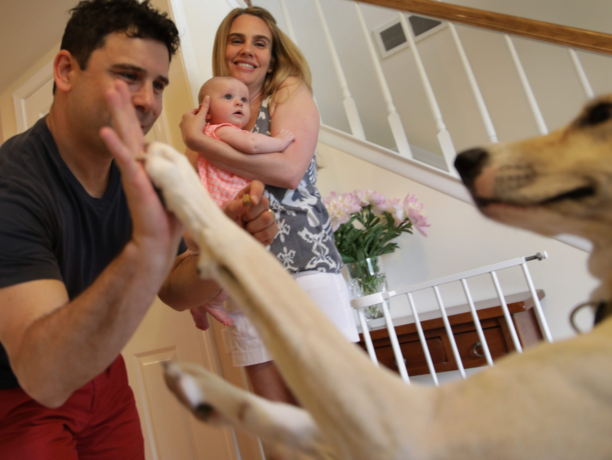 Julie D'Angelo and baby Briar look on as Frank D'Angelo high-fives their dog at their home in Northville on Friday, June 8, 2018.