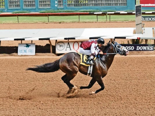Apolitical Blood scored the fastest-qualifying time to the Grade 1, 2,378,383 All American Derby on Sunday at Ruidoso Downs.