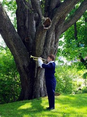 """A lone trumpeter concludes the 2011 Memorial Day ceremony at Webster Rural Cemetery with """"Taps."""""""