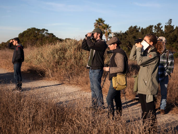 Bird watchers participate in the annual Christmas Bird