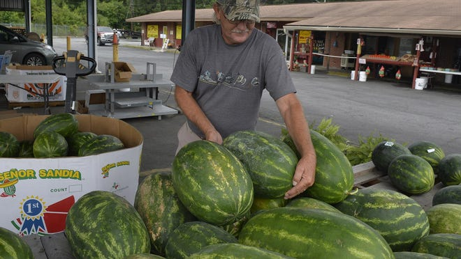 Kevin Stokes arranges the watermelon at Stokes Produce at the State Farmers Market Monday, June 8. The market is in danger of closing due to statewide budget cuts and Stokes owner Charlie Stokes said his business would be forced to close if the market is shut down.